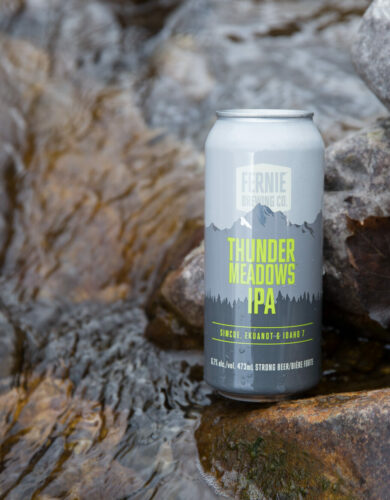 Can of Thunder Meadows IPA on a rock next to a river.