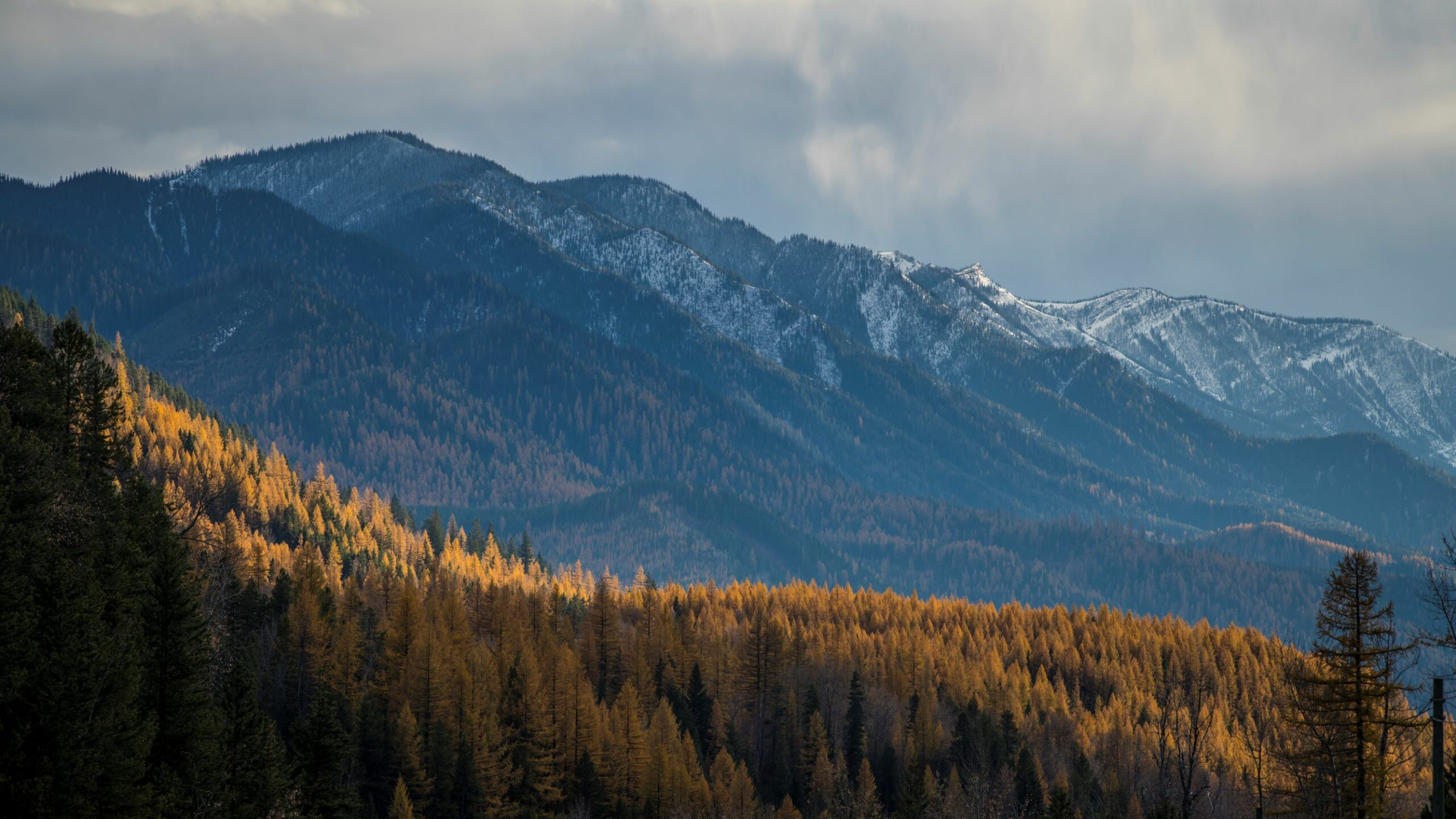 Mountains in the Elk Valley