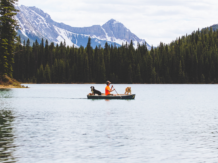 A couple canoing on a lake