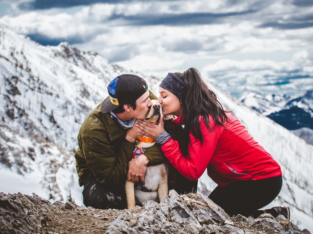 Bhawna and Tyler kissing their dog on a mountain top.